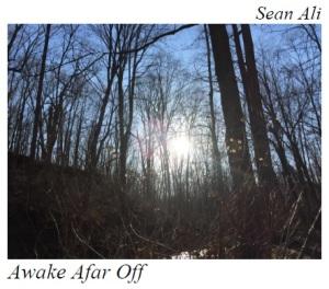 Awake cover